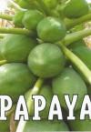 Fragancia Papaya